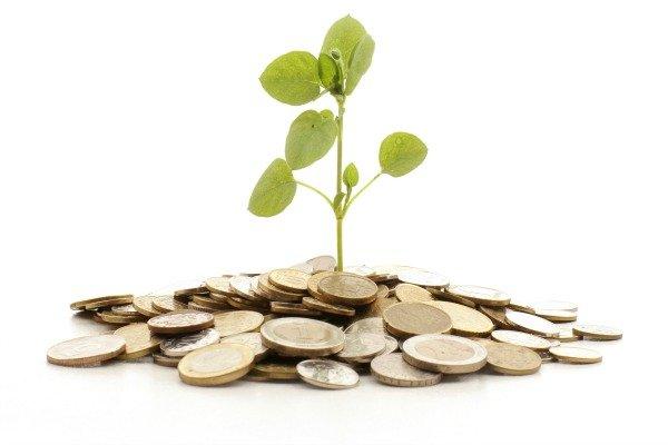 O Dinheiro acaba antes do mês? Conheça 5 dicas para organizar suas finanças.
