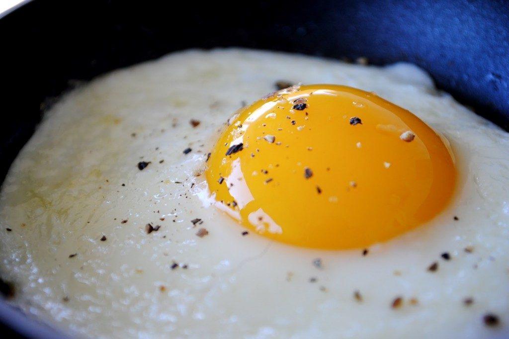 A receita mais fácil do mundo: ovo de microondas!