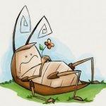 Conheça novas dicas de como matar baratas e outros insetos!