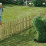 Como conviver bem com os seus vizinhos