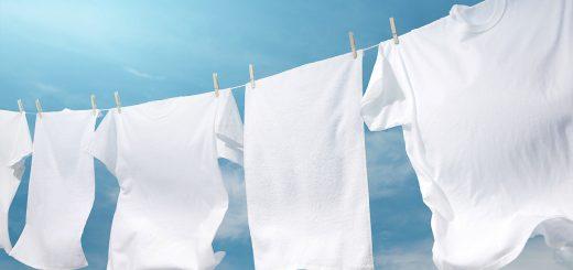 camisas-brancas
