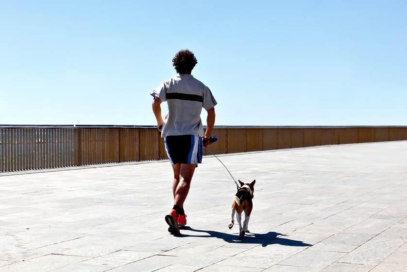 Não gosta de exercícios? Que tal uma ajuda do seu melhor amigo?