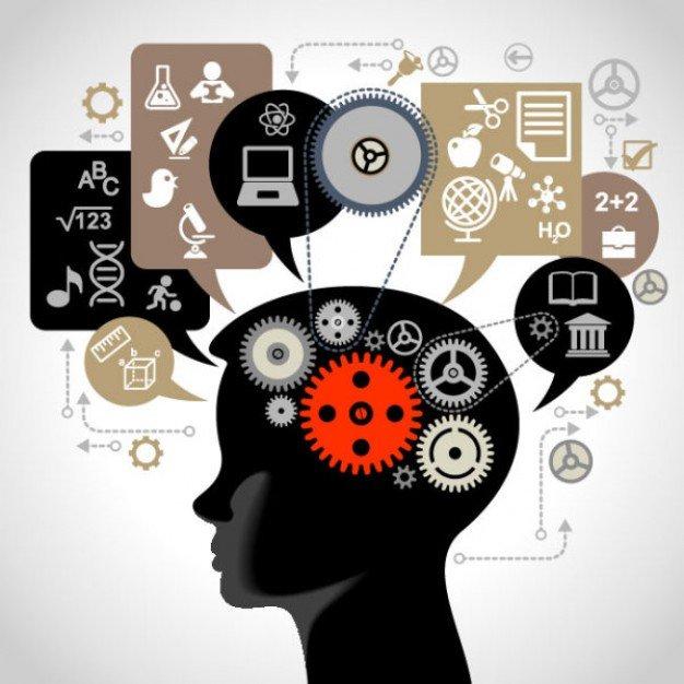 memoria-cerebro