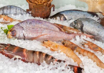 Escolhendo peixes e frutos do mar