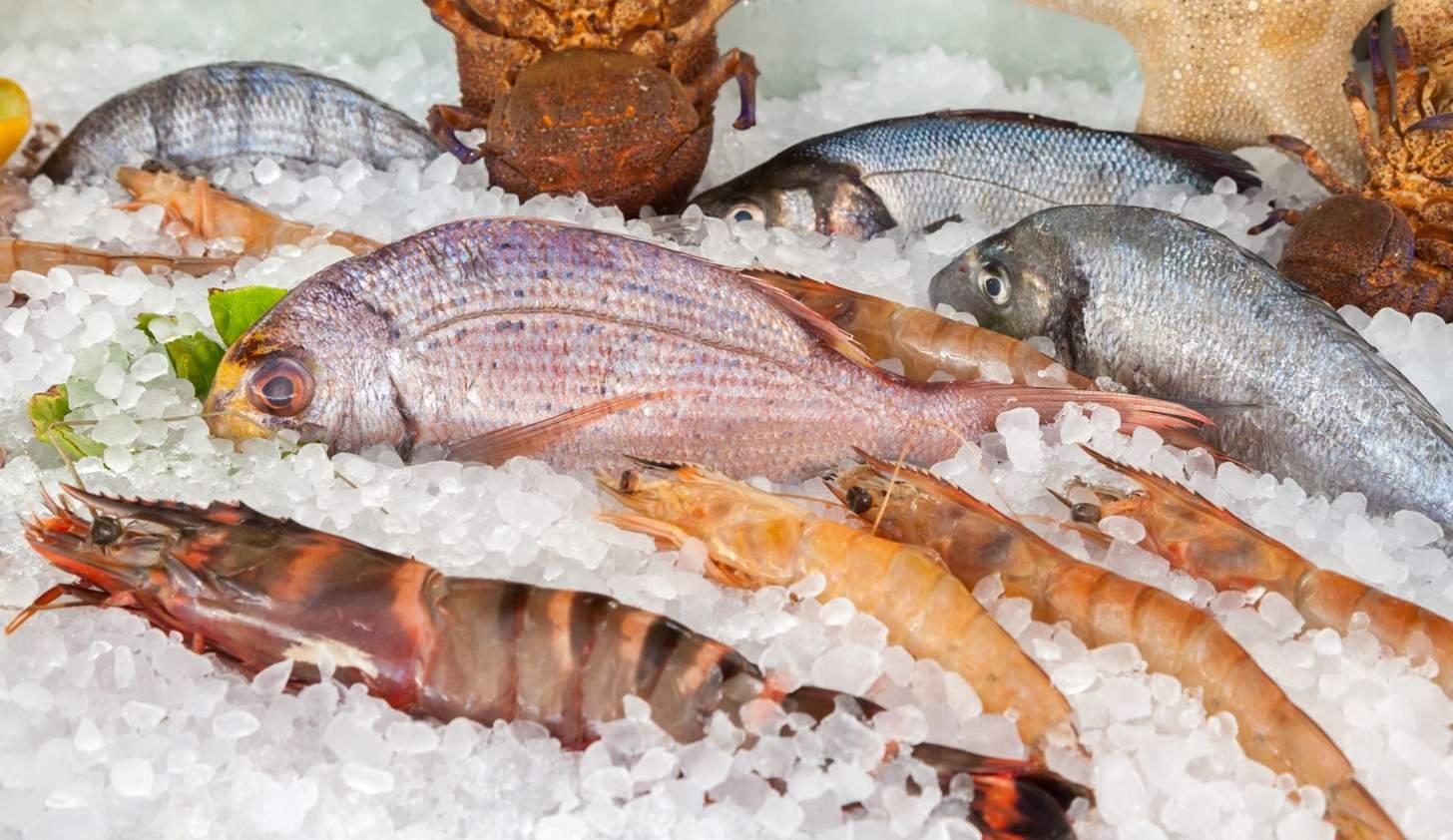 Saiba a forma correta de escolher peixes e frutos do mar