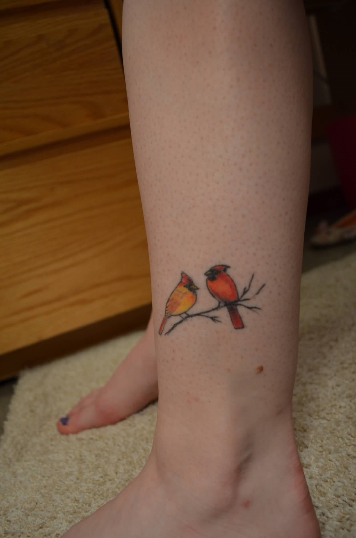 Tatuagem de pássaro colorido na perna