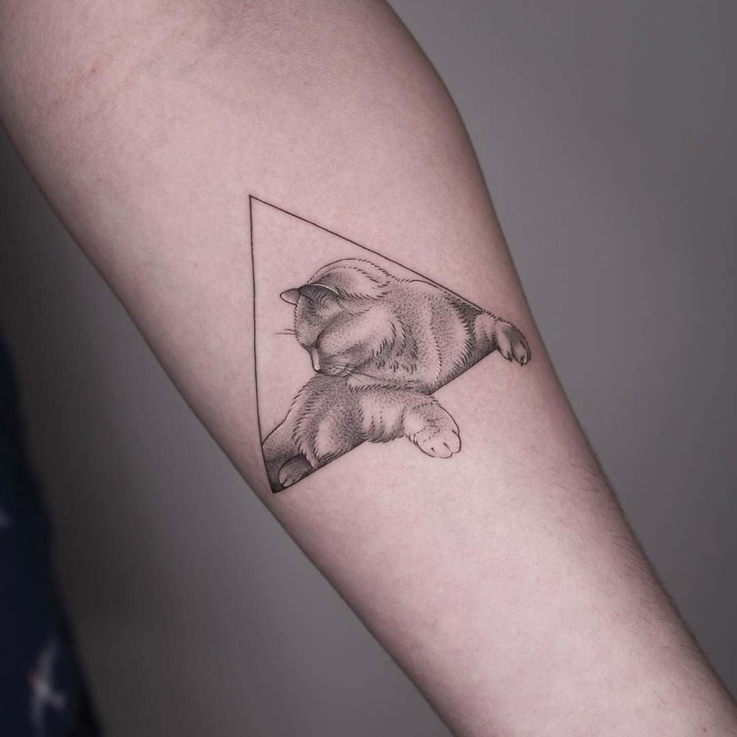 Tatuagem de animais: gato no braço