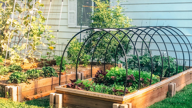 fazer um jardim incrível em casa